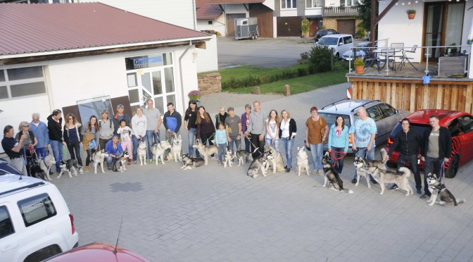 Welpentreffen am 03 Oktober 2015 in Schwanheim